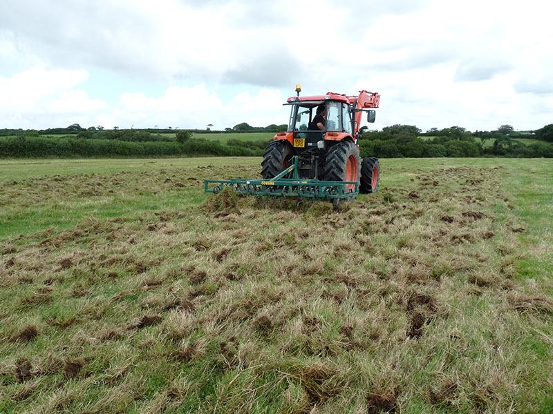 Creating new Culm grassland within the Tamar catchment (002).jpg