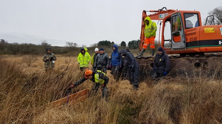 Wildlife and water benefits from peatland restoration on Bodmin Moor